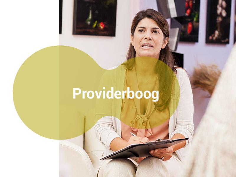 Providerboog-VerzuimMeesters-Arbodienst